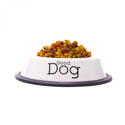 Isolated dog food dish for...